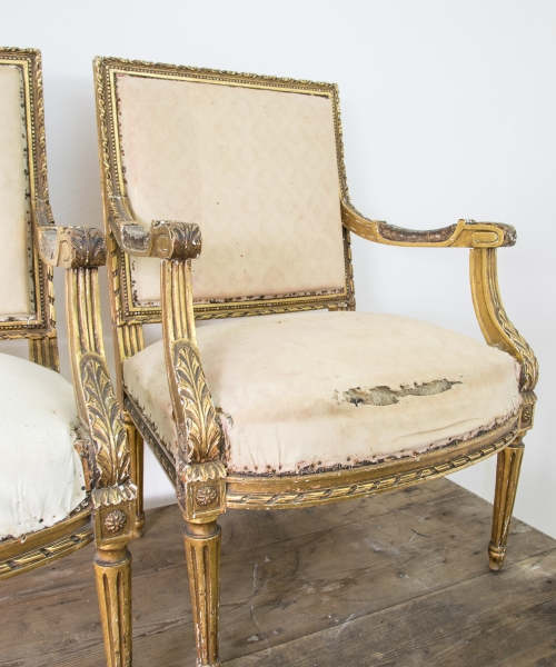 19th C. Louis XVI Style Giltwood Chairs. Home / Furniture / 19th C. Louis  XVI Style Giltwood Chairs