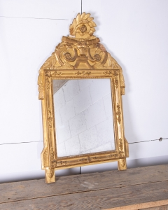 Crested gilt French Mirror